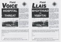 2006 Pontypridd Voice Hospital Threat