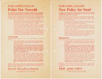 1970x Polisi dur Newydd